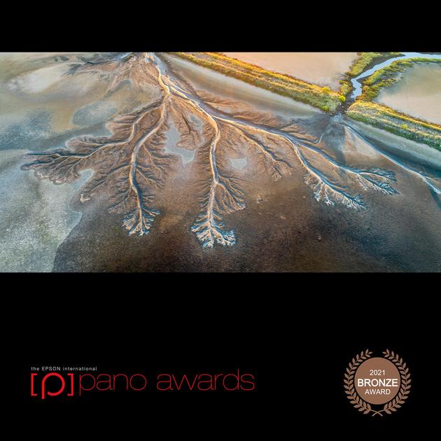 2021-Epson-Pano-Awards-Score-Open Awards-Social-Badge-11398