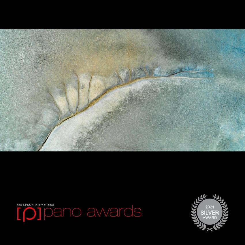 2021-Epson-Pano-Awards-Score-Open Awards-Social-Badge-11404 Score 82