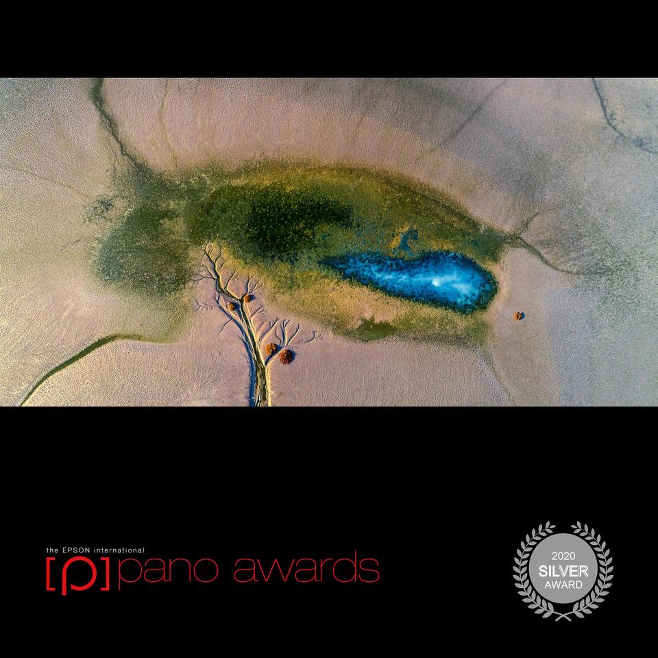 2020-Epson-Pano-Awards-Score-Open Awards-Social-Badge-1779