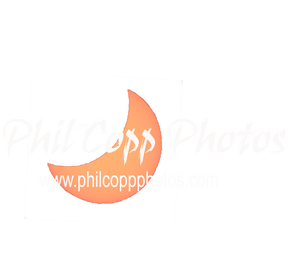 Phil Copp Photos